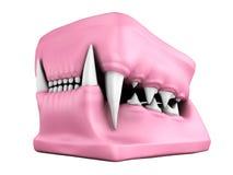 3d model kotów zęby ciskający Fotografia Royalty Free