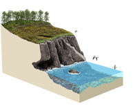3d model terrain cliff ecosystem Stock Photography