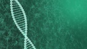 3d model van DNA-molecules structureert geometrisch model van lichtgevend lijnenblauw stock videobeelden