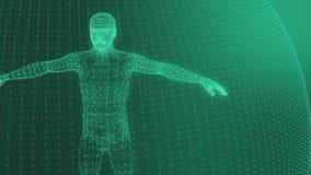 3d model van mensen geometrisch model van lichtgevende groene lijnen stock videobeelden