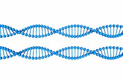 DNA Molecule isolated on white background Stock Images