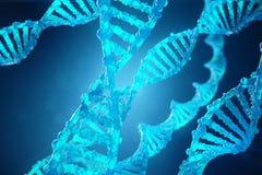 3D molecule van DNA van de Illustratieschroef met gewijzigde genen Het verbeteren verandering door genetische biologie Moleculair Royalty-vrije Stock Afbeeldingen