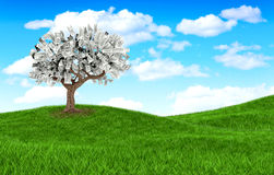 3D money tree Stock Photos