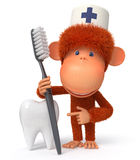 3d monkey doctor Royalty Free Stock Photos