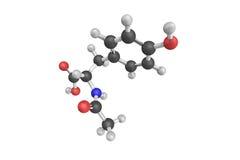 3d N乙酰基L酚基乙氨酸结构, L提尔的一个乙缩醛化的形式 库存图片