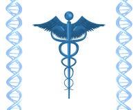 D.N.A Health vector illustration