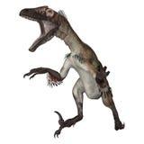 3d nad ścieżką ścinku dinosaur odpłaca się cienia utahraptor biel Zdjęcia Stock