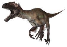 3d nad ścieżką ścinku dinosaur odpłaca się cienia utahraptor biel Fotografia Royalty Free