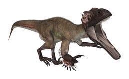 3d nad ścieżką ścinku dinosaur odpłaca się cienia utahraptor biel Zdjęcia Royalty Free