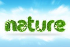 3D Nature Grass. 3D Nature text with Grass texture white flowers and blue sky Royalty Free Stock Images