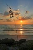 3 d ocean sprawia, że zachód słońca Obrazy Stock