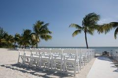 3 d oceanu sceny palma wytopione drzewo Zdjęcia Stock