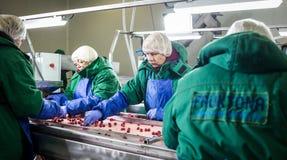 04 d'octobre 2017 - Vinnitsa, l'Ukraine Les gens au travail dans le prote Photo stock