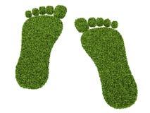 3d odcisk stopy trawy zieleni narastająca ilustracja Fotografia Stock