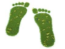 3d odcisk stopy trawy zieleni narastająca ilustracja Obrazy Stock