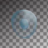 3d Odosobniona ludzka błękitna komórka realistyczna ballons ilustracja Szablon dla medycyny i biologii Obraz Royalty Free