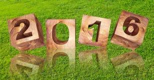 3d odpłacający się, abstrakcjonistyczny rok 2016 na zielonej trawy tle Fotografia Royalty Free