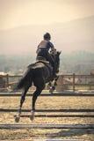 Dżokej jedzie szybkiego thoroughbred konia Fotografia Stock