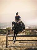 Dżokej jedzie szybkiego thoroughbred konia Fotografia Royalty Free