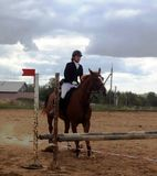 Dżokej na koniu Przed skokiem - Obraz Stock