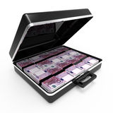 3d Open briefcase full of Euro notes Royalty Free Stock Images