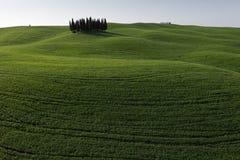 d'Orcia de San Quirico - Toscane - Italie Images libres de droits