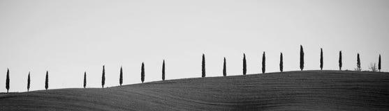 D'Orcia de Val em Toscânia, Itália Foto de Stock Royalty Free