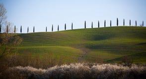 D'Orcia de Val em Toscânia, Itália Imagens de Stock