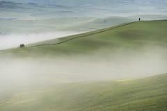 d'Orcia VAl, Тоскана Стоковое Изображение RF