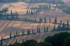 d orcia val uliczny Tuscany zdjęcie royalty free