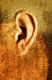 D'oreille étrange illustration libre de droits