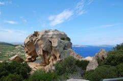 d'Orso de la ceja de Roccia Imagenes de archivo