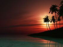 3D palm tree island at sunset Stock Photos