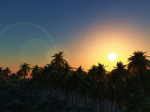 3D palm tree landscape at sunset Royalty Free Stock Photos