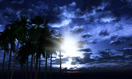 3D palm trees against a moonlit sky Royalty Free Stock Photography