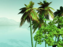 3D palm trees looking over misty ocean Stock Photos