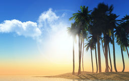 3D palm trees at sunset Royalty Free Stock Image