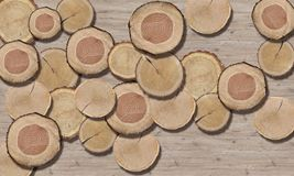 3d papel pintado, textura del círculo del árbol, primer imagenes de archivo