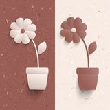 3d paper flowers. Abstract cardboard background with 3d paper  flowers Royalty Free Stock Images