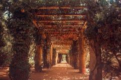 d Parco di Carlos I, Portogallo immagine stock libera da diritti