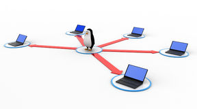 3d penguin in center of computer network concept Royalty Free Stock Images