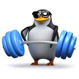 3d Penguin lifting heavy weights Royalty Free Stock Photos
