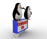 3d penguin sitting on constact us sing board concept Stock Photo