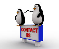 3d penguin sitting on constact us sing board concept Stock Photos