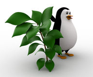 3d penguin with small green plant concept Royalty Free Stock Photography