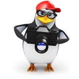 3d Penguin takes a photograph Stock Photos