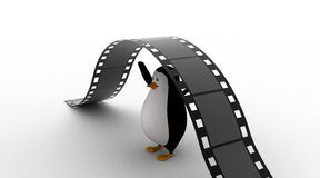 3d penguin under big and long film reel concept Royalty Free Stock Photo