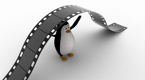 3d penguin under big and long film reel concept Stock Photos