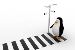 3d penguin walking on zibra crossing and cctv security camera on road concept Royalty Free Stock Image