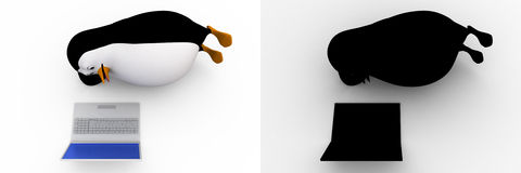 3d penguin watching on laptop screen concept collections with alpha and shadow channel Stock Image